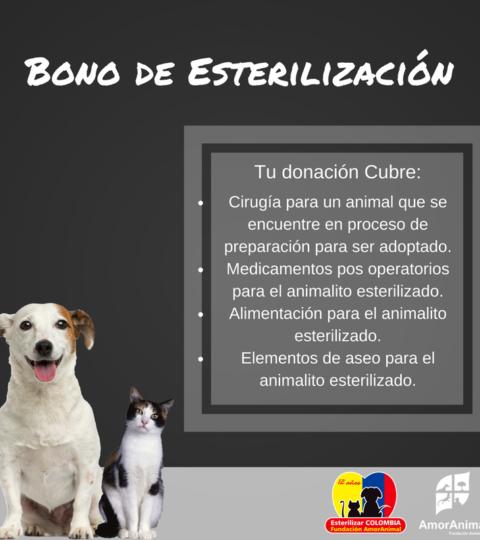 Bono De Esterilización